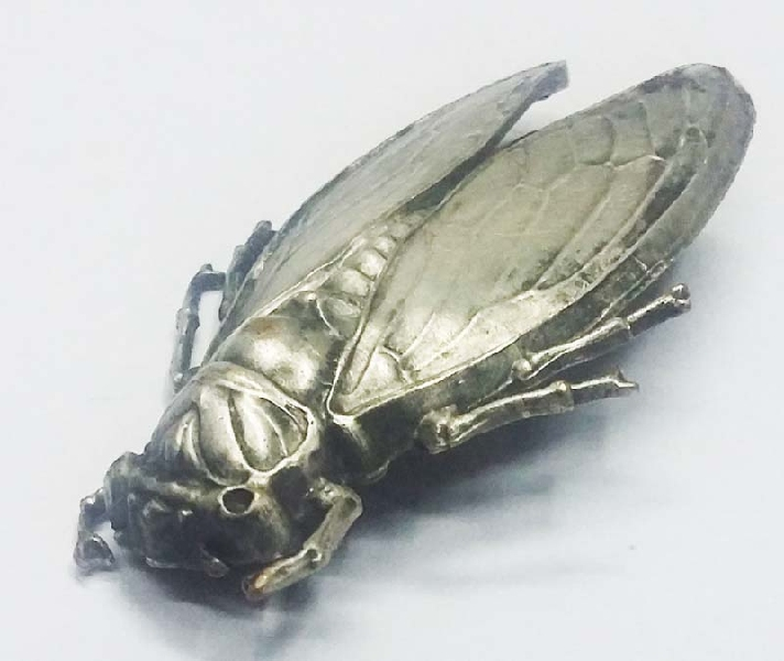 Fashion / Moda accesorios etc   Rare old brass plated brooch cicade bug shape